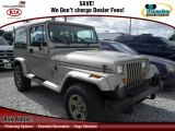 1993 Jeep Wrangler Light Champagne Metallic