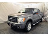 2010 Sterling Grey Metallic Ford F150 FX4 SuperCrew 4x4 #60111045