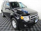 2009 Black Ford Escape XLT V6 4WD #60181695