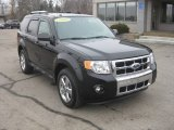 2009 Black Ford Escape Limited V6 4WD #60181635