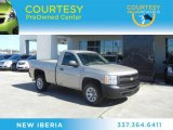 2009 Silver Birch Metallic Chevrolet Silverado 1500 Regular Cab #60233375