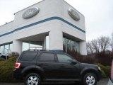 2009 Black Ford Escape XLT V6 4WD #60232793