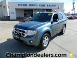 2010 Steel Blue Metallic Ford Escape XLT #60232628