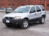 2006 Silver Metallic Ford Escape XLT V6 4WD #6020927