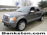 2010 Sterling Grey Metallic Ford F150 Platinum SuperCrew 4x4 #60289636