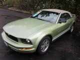 2005 Legend Lime Metallic Ford Mustang V6 Deluxe Convertible #60328296