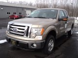 2012 Pale Adobe Metallic Ford F150 XLT SuperCab 4x4 #60328747