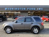 2011 Sterling Grey Metallic Ford Escape XLT 4WD #60379050