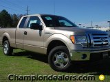 2012 Pale Adobe Metallic Ford F150 XLT SuperCab #60378675