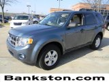 2010 Steel Blue Metallic Ford Escape XLT #60378493