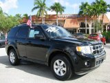 2009 Black Ford Escape Limited #60445103