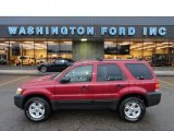 2006 Redfire Metallic Ford Escape XLT V6 4WD #60506653