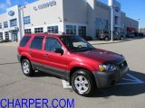 2006 Redfire Metallic Ford Escape XLT V6 4WD #60506222