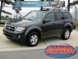 2009 Black Pearl Slate Metallic Ford Escape XLT #60561835