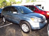 2010 Opal Sage Metallic Honda CR-V EX-L #60561317