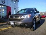2009 Borrego Beige Metallic Honda CR-V LX 4WD #60561666