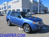 2009 Sport Blue Metallic Ford Escape XLT 4WD #60561298