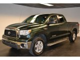 2008 Timberland Green Mica Toyota Tundra SR5 TRD Double Cab #60561950