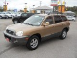 Hyundai Santa Fe 2004 Data, Info and Specs