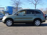 2009 Green Tea Metallic Honda CR-V EX 4WD #60657177