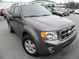 2011 Sterling Grey Metallic Ford Escape XLT V6 #60656920