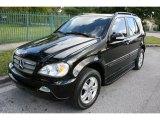 2005 Black Mercedes-Benz ML 350 4Matic #60696276