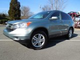 2010 Opal Sage Metallic Honda CR-V EX-L #60696531