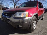 2003 Redfire Metallic Ford Escape XLT V6 4WD #60696259
