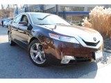 2009 Mayan Bronze Metallic Acura TL 3.7 SH-AWD #60696181