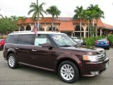2010 Cinnamon Metallic Ford Flex SEL #60752844