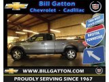 2010 Sterling Grey Metallic Ford F150 FX4 SuperCab 4x4 #60753370