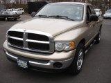 2004 Light Almond Pearl Dodge Ram 1500 SLT Quad Cab #60752715