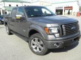 2011 Sterling Grey Metallic Ford F150 FX4 SuperCrew 4x4 #60753017