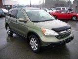 2008 Green Tea Metallic Honda CR-V EX-L 4WD #60752660