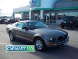 2005 Mineral Grey Metallic Ford Mustang V6 Deluxe Coupe #60805213