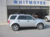 2012 Ingot Silver Metallic Ford Escape XLT 4WD #60839567