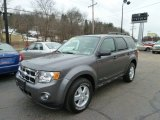 2011 Sterling Grey Metallic Ford Escape XLT 4WD #60907366
