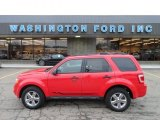 2009 Torch Red Ford Escape XLT 4WD #60907411