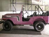 AMC Jeep Data, Info and Specs