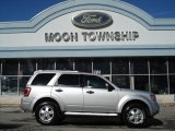 2012 Ingot Silver Metallic Ford Escape XLT 4WD #60934596
