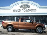 2012 Golden Bronze Metallic Ford F150 XLT SuperCab 4x4 #60934593