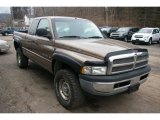 2001 Dodge Ram 1500 Medium Bronze Pearlcoat