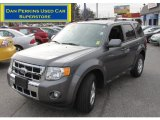 2011 Sterling Grey Metallic Ford Escape Limited V6 4WD #61074448