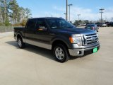 2010 Sterling Grey Metallic Ford F150 XLT SuperCrew #61113763