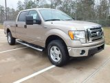 2012 Pale Adobe Metallic Ford F150 XLT SuperCrew 4x4 #61113734