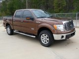 2012 Golden Bronze Metallic Ford F150 XLT SuperCrew 4x4 #61113724