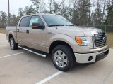 2012 Pale Adobe Metallic Ford F150 XLT SuperCrew #61113720