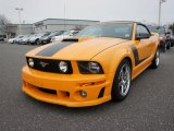 2008 Ford Mustang ROUSH 427R Convertible Data, Info and Specs
