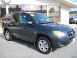 2010 Black Forest Pearl Toyota RAV4 I4 4WD #61113070