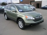 2009 Green Tea Metallic Honda CR-V EX-L 4WD #61112404